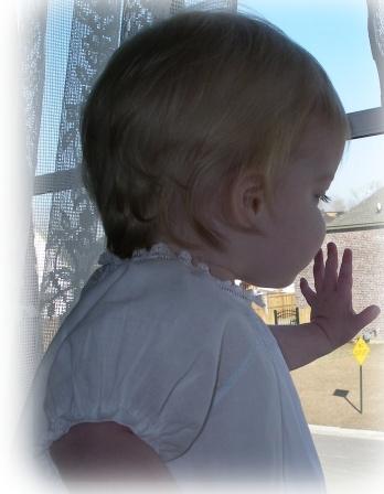 Baby Rose Raglan Dress View 3